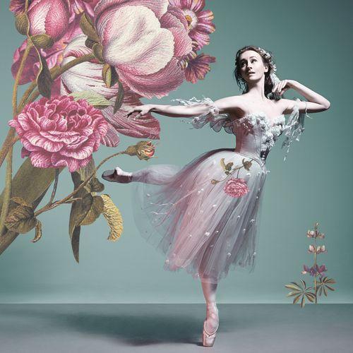 Madeleine_eastoe_flowers