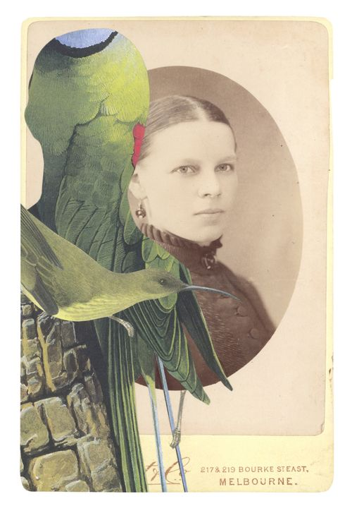 Gracia_haby_cabinet_card_collage01A