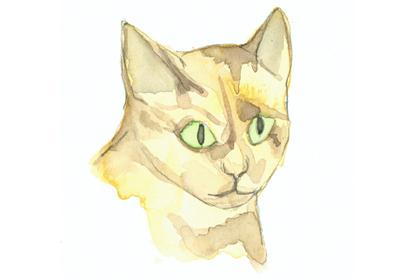 Louise_jennison_cats1
