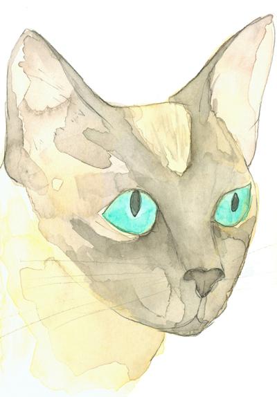 Louise_jennison_cats3