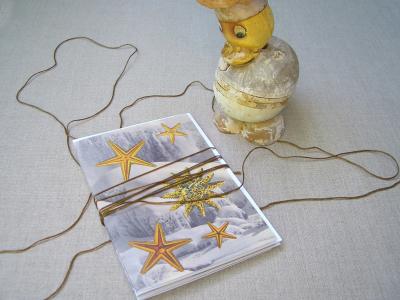 Starfish_five1