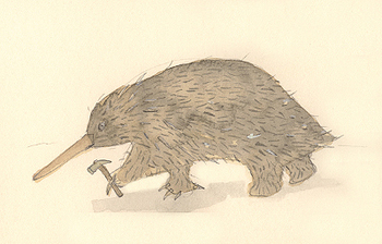 Echidna_with_hammer_2