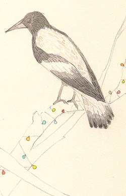 Louise_jennison_bird10