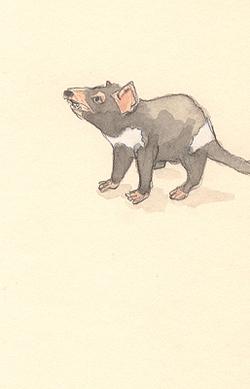 Louise_jennison_marsupial1