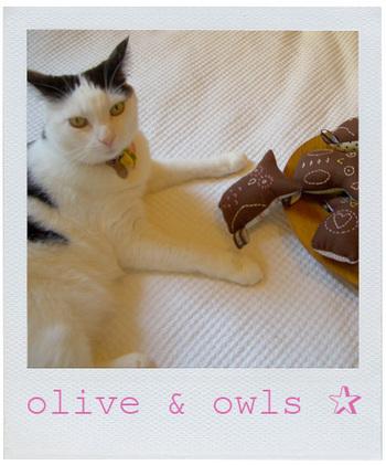 Owl_olive