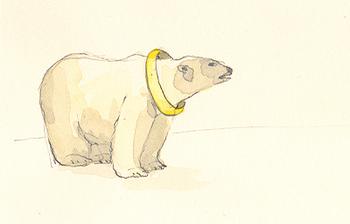 Polar_bear_and_floatie_1