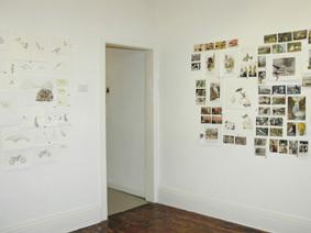 Trapdoor_exhibition_1