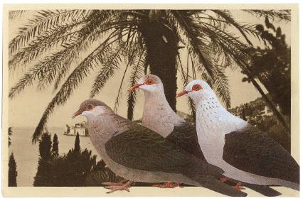 Gracia_postcard1_2