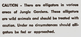 Alligator_warning