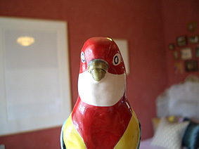 Bird_birthday