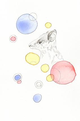 June_mice_12
