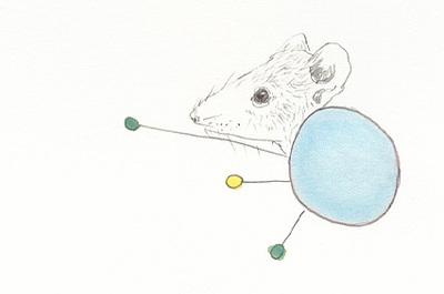 June_mice_9_1