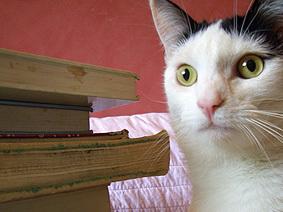 Olive_books
