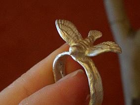 Silver_bird_3