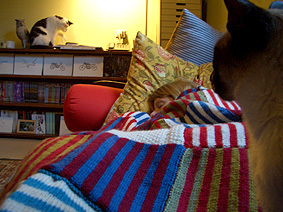 Striped_rug2