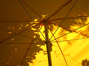 Yellow_garden_umbrella