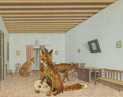 Skulk_of_foxes1_2